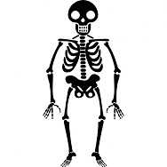 halloween-skeleton_318-30049